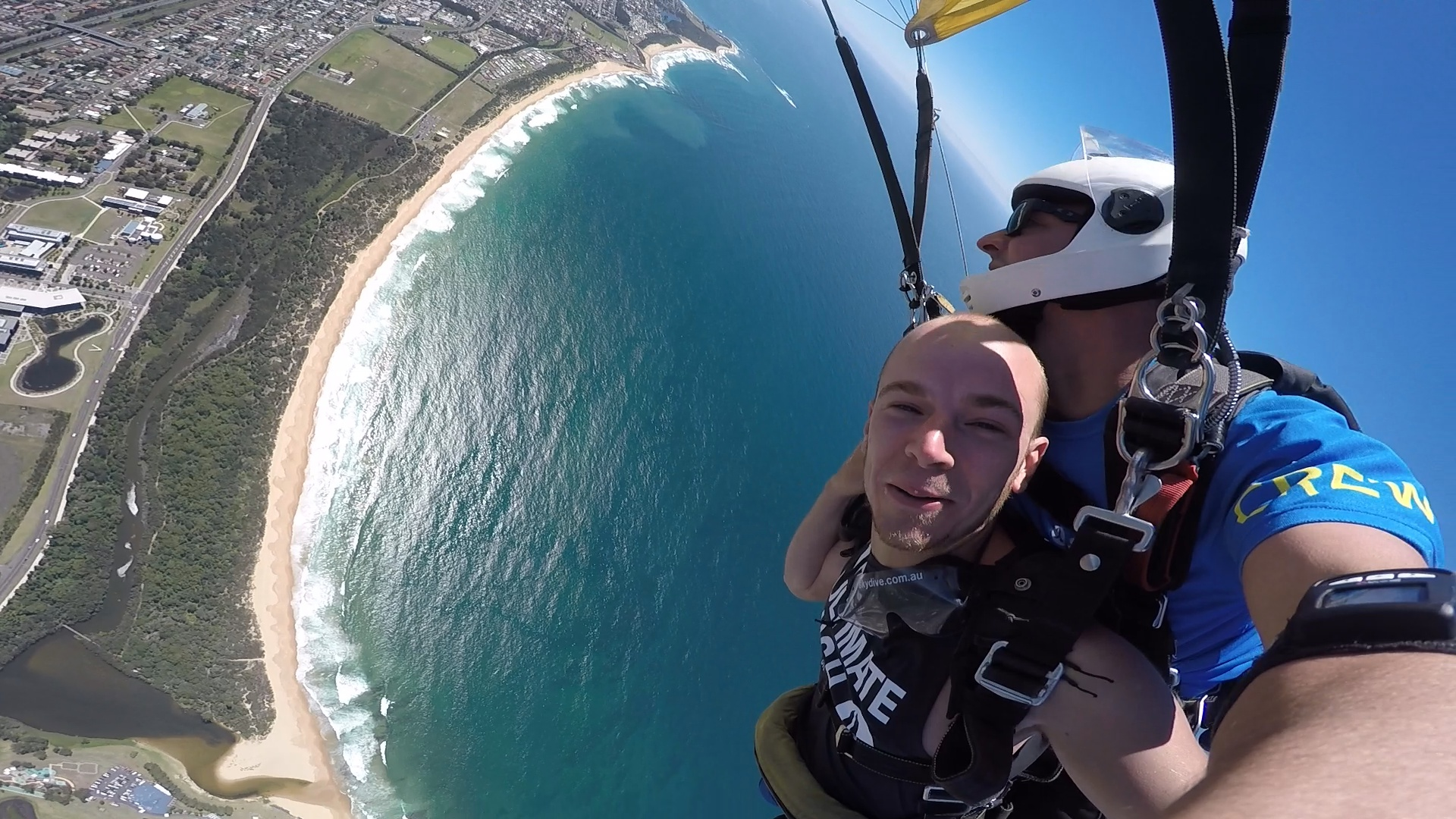 Your Sydney Ultimate Guide: From Skydiving To Feeding Kangaroos